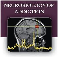 Symbolic Sign: The Neurobiology of Addiction