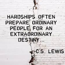 Hardship Brick Wall